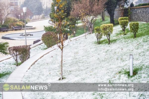 Первый снег в Баку запомнился интересными моментами