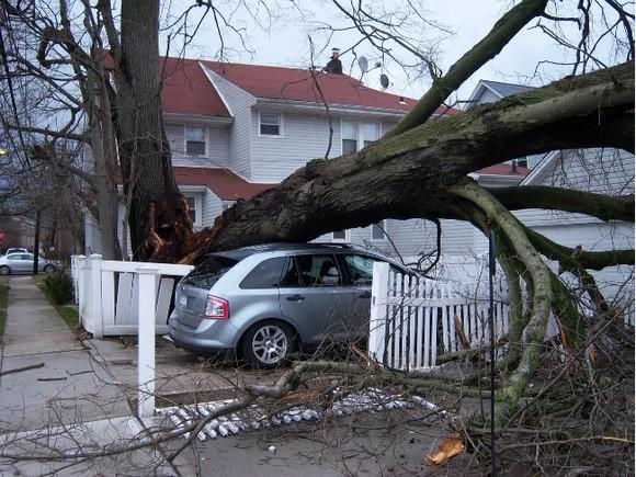 НаГерманию иНидерланды обвалился смертоносный циклон
