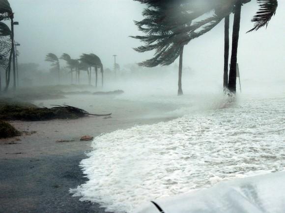 Из-за урагана «Мэтью» воФлориде десятки тыс. людей остались без света