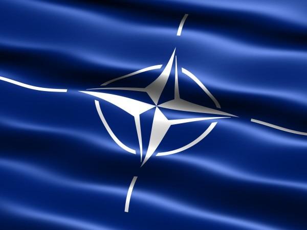 NATO_institut